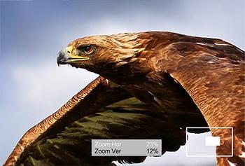Lilliput A7 - pixel zoom umożliwia powiększenie wybranego fragmentu zdjęcia