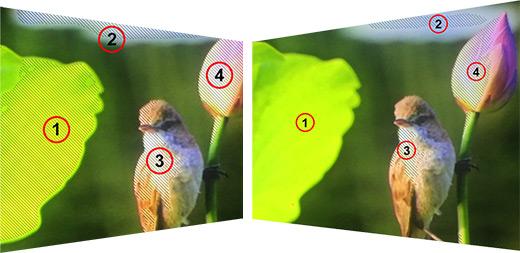 Lilliput A7 - funkcja zebra zakreśla prześwietlone partie obrazu